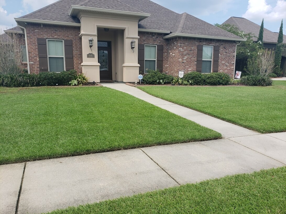 centipede grass sod for sale, delivery, and installation in baton rouge, denham springs, prairieville, zachary, gonzales, central louisiana